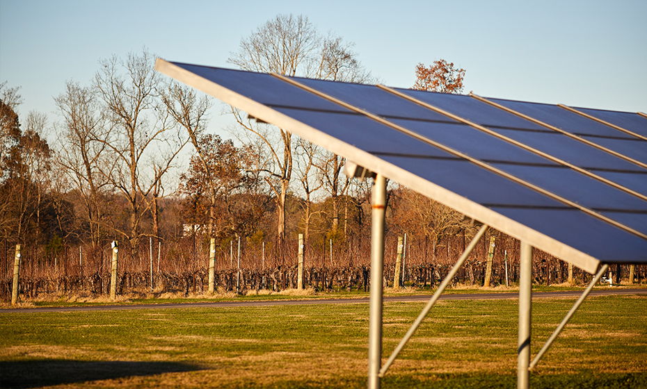 Winery harvests sun energy for grapes, solar panels | Duke Energy |  illumination