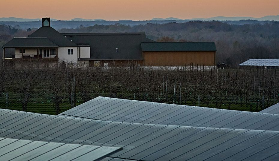 Winery harvests sun energy for grapes, solar panels