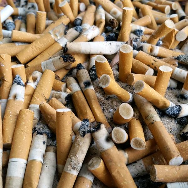 Cigarettes+in+ashtray