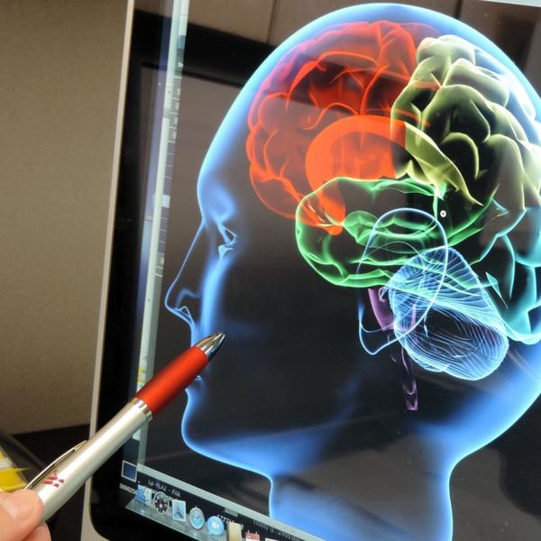 Brain+image+close-up
