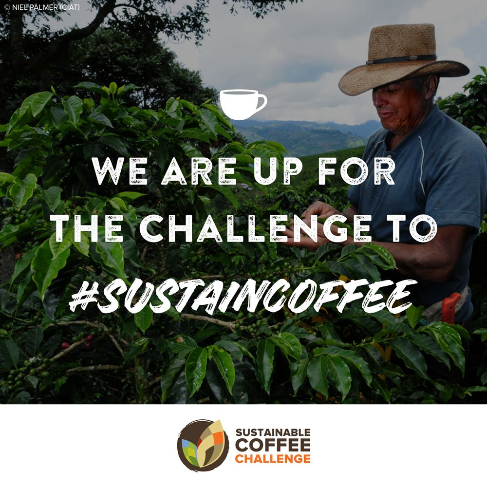 Dunkin' Joins the Sustainable Coffee Challenge to Help Protect the Coffee We Love