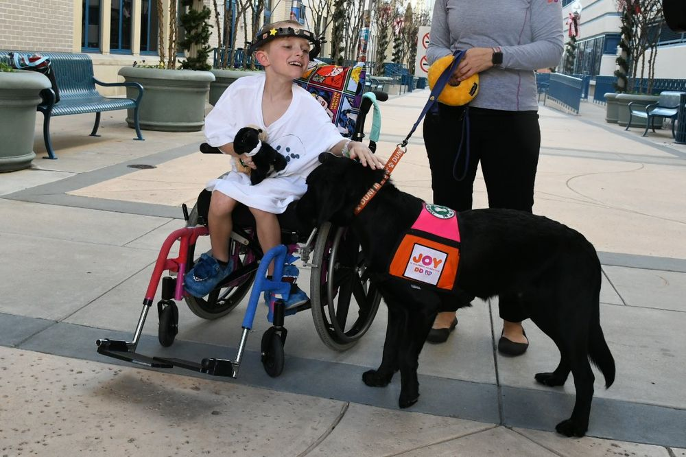 "Joy in Childhood Foundation® Unleashes ""Dogs for Joy"""