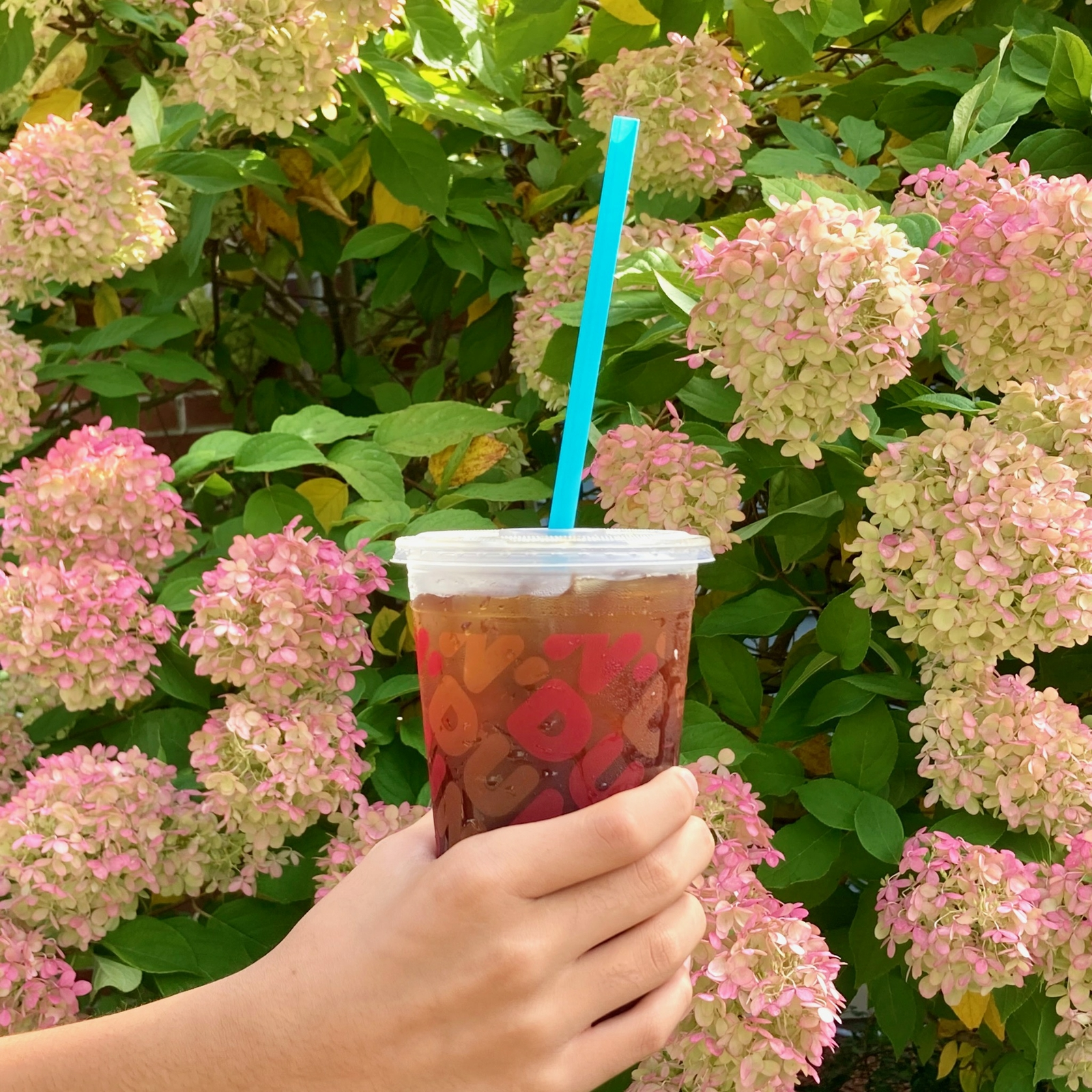 Dunkin' Tests Biodegradable Straws at Select Stores Across the U.S.