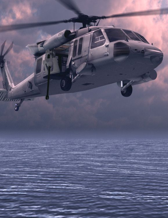 Rapid Airborne Mine Clearance System (RAMICS)