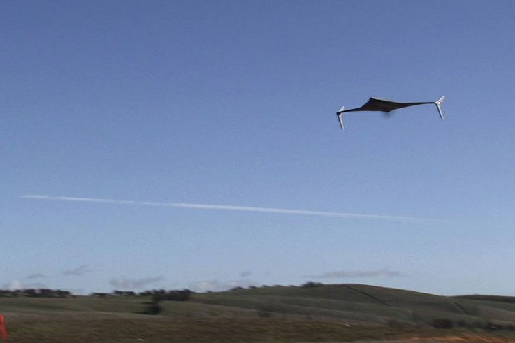Bat Unmanned Aircraft System (UAS)