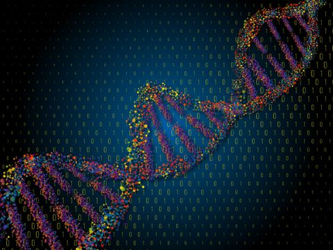 Genomic Security: A New Frontier