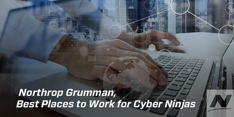 """Cyber Ninjas"" Tell it Like it is ... and Companies are Listening"