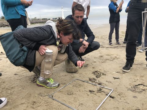 Northrop Grumman Foundation - EarthEcho Expeditions - Plastics Seas - Australia - Philippe Coustea Jr. and teacher using quadrant on the beach - Oct. 2 2018