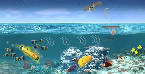 DARPA's Biological Technology Office Selects Northrop Grumman for Persistent Aquatic Living Sensors (PALS) Program