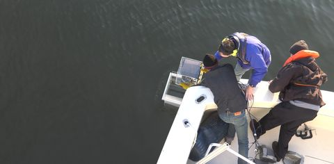 Northrop Grumman to Upgrade Oyster Monitoring in Chesapeake Bay