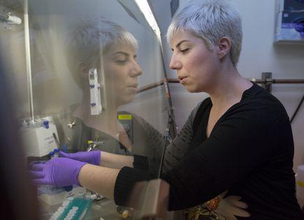 Promising microRNA study