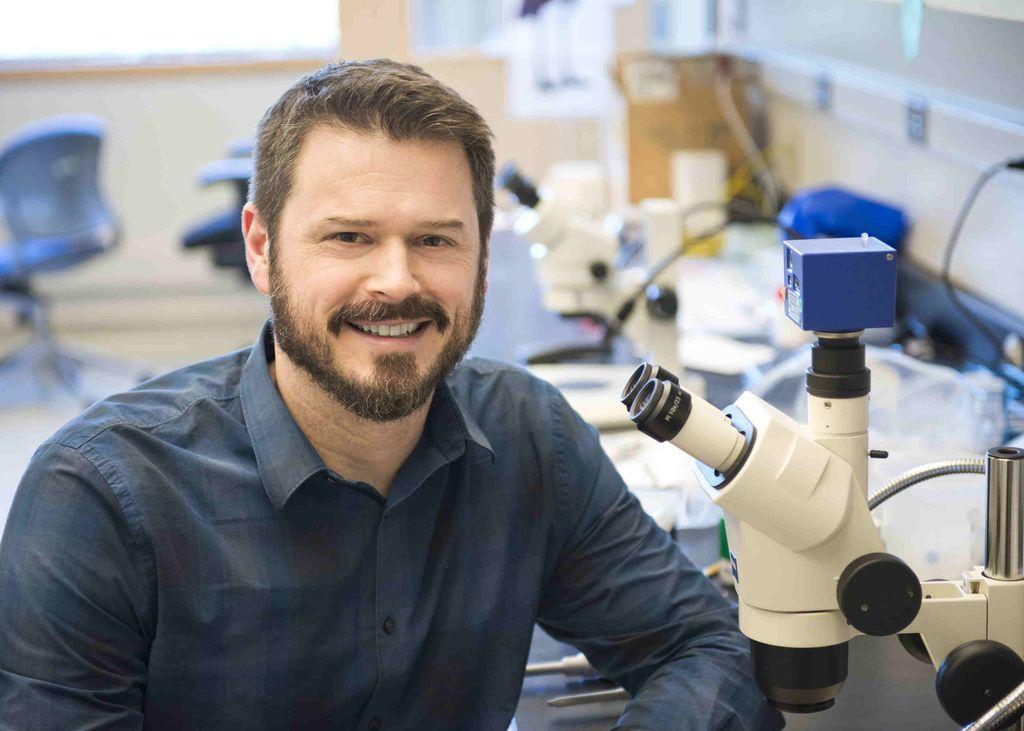 Marc Freeman, Ph.D