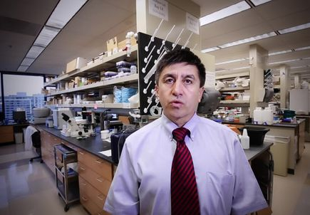 VIDEO: Profile of Shoukhrat Mitalipov, Ph.D.