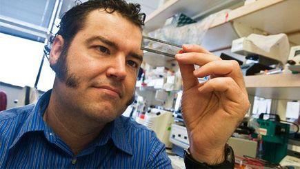 Brian J. O'Roak, Ph.D. in the lab