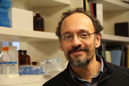 Claudio Mello, Ph.D.