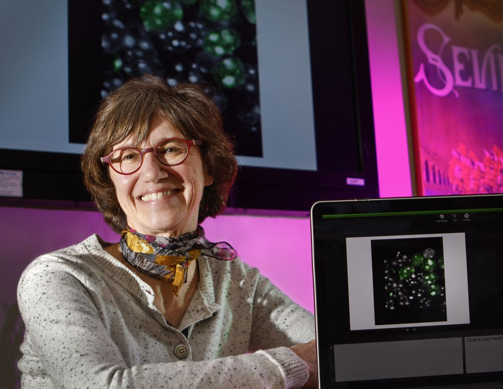 Research Week: Gail Mandel, Ph.D.