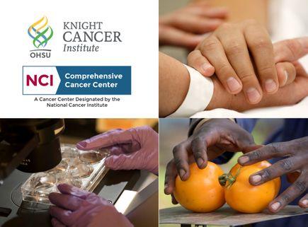 Knight Cancer Institute NCI designation