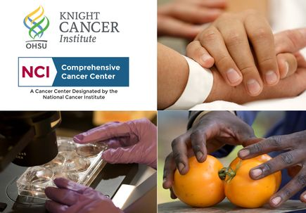 OHSU Knight Cancer Institute earns National Cancer Institute's highest distinction