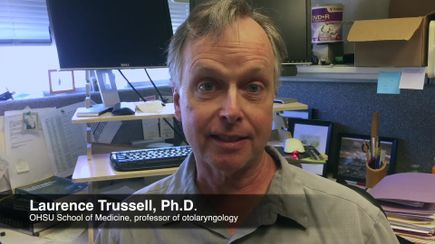 Download video: Tinnitus research