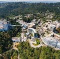OHSU 2020 accomplishments: The year in review
