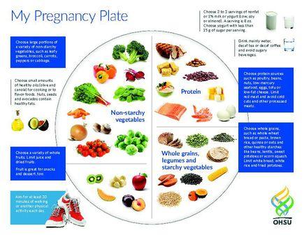 My Pregnancy Plate (PDF)
