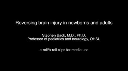 DOWNLOAD: Media clips for white matter injury research