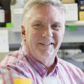 Peter Barr-Gillespie, Ph.D.