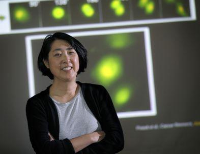 Melissa Wong, Ph.D.