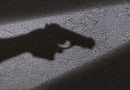 Sept. 28: OHSU lecture to address youth gun violence prevention