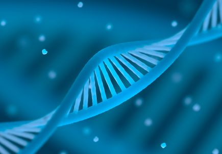 Oct. 16 Science Pub Talk: How gene therapy, stem cells can help cure blindness