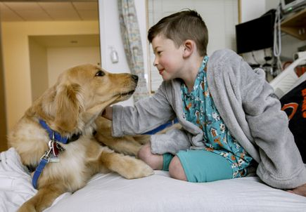 Helping paws: OHSU Doernbecher expands Hospital Facility Dog Program