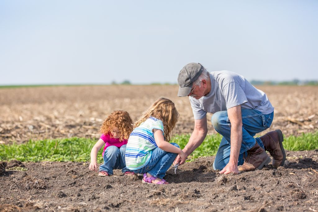 grandfather farmer kneeling on the dirt in a field, with two young girls, planting something in the dirt