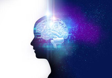 Brain Awareness lecture series begins May 6