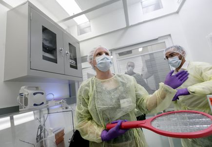 Mosquito facility opens to aid search for malaria drugs