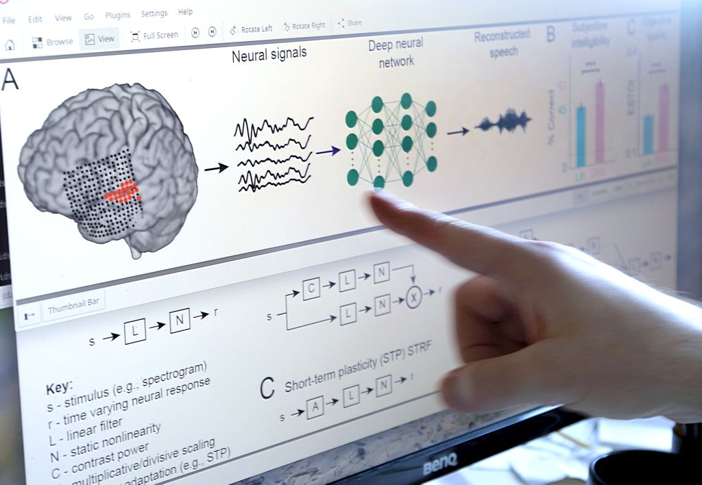 Image of person's finger pointing to diagram on a computer of a brain, and graphs