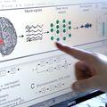 How the brain hears