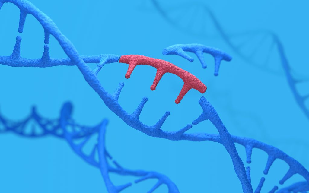 Genetic engineering and gene manipulation concept, 3d rendering,conceptual image.