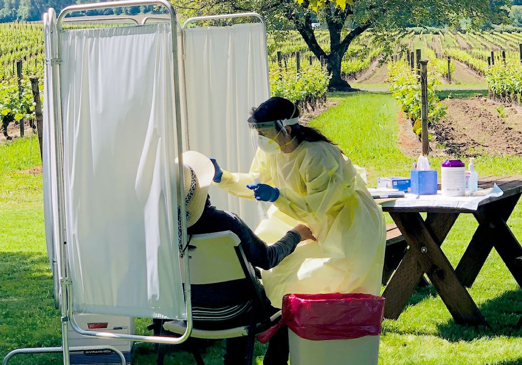 a woman draped in protective equipment, out in a vineyard, giving a nasal swab to a person wearing a cowboy hat and partially hidden behind a white partition