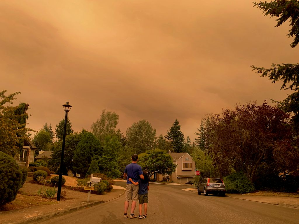 man and child, seen from behind, arm in arm, looking at red-colored smokey sky