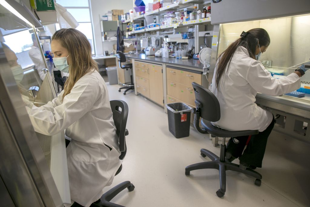 Lauren Rust, Ph.D. (left) and Sreya Biswas, Ph.D. (right) shown working in lab coats in Ben Burwitz's medical laboratory.