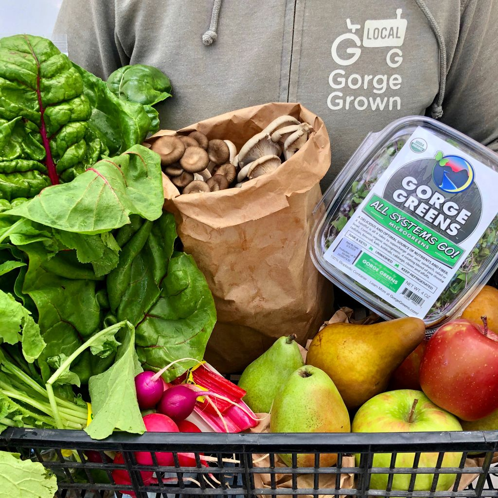 Close-cropped shot of a torso in a Gorge Grown sweatshirt holding a basket filled with lettuce, radishes, pears, apples, and mushrooms.