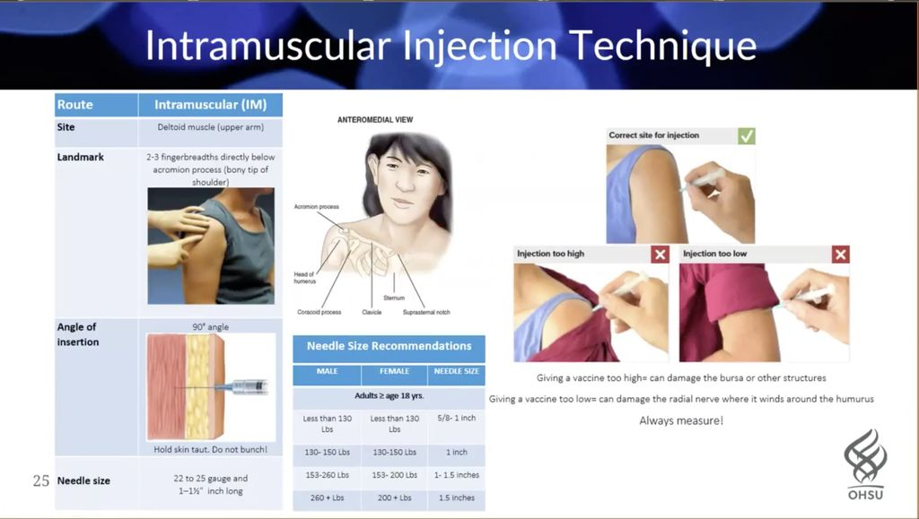 A screenshot of OHSU's COVID-19 Vaccination Training video shows multiple illustrations of how injectable vaccinations should be administered into the human shoulder.