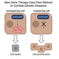 Gene therapy uses pain reliever to combat genetic diseases