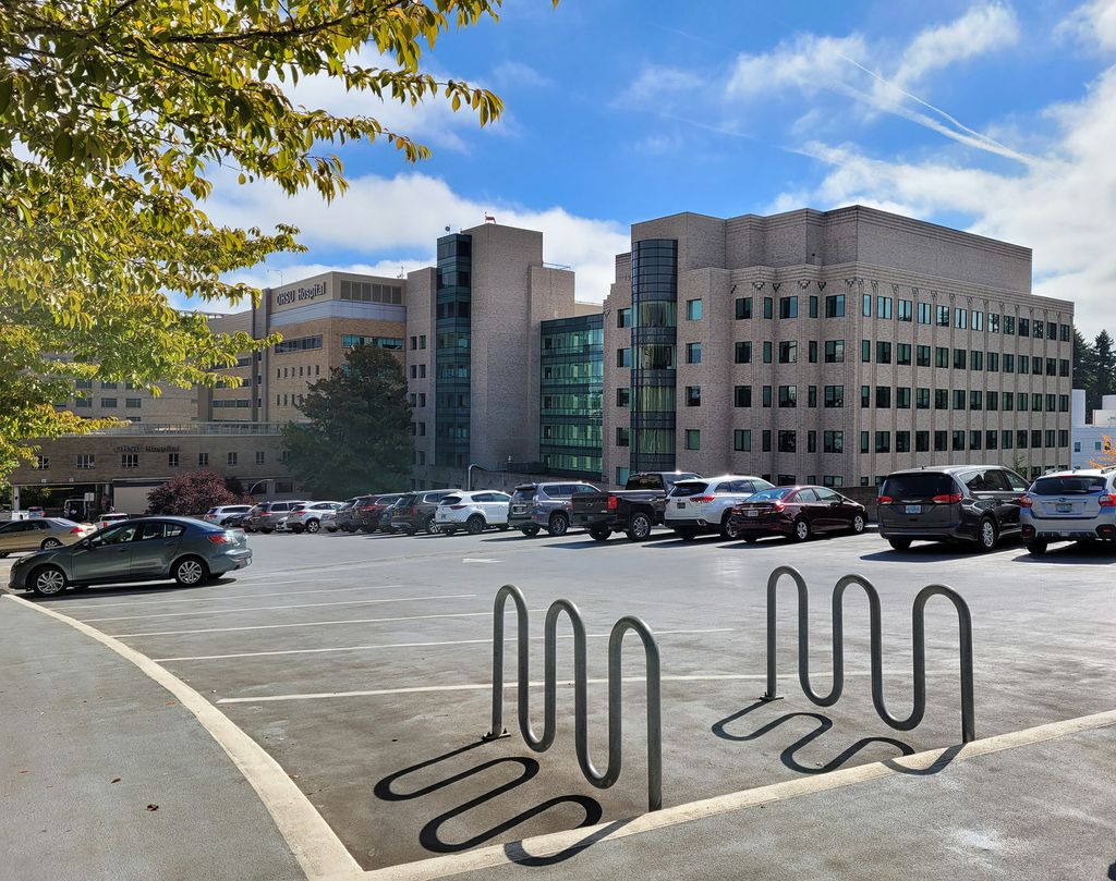 Bike racks have a whimsical shadow cast on the parking lot road during a cool sunny morning at OHSU.