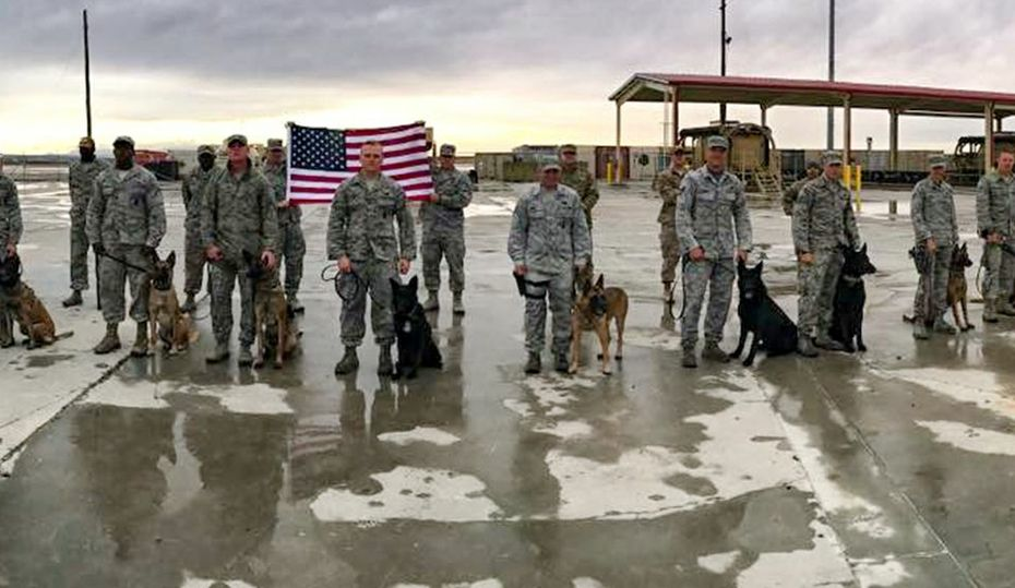 A soldier and the dog that saved his life
