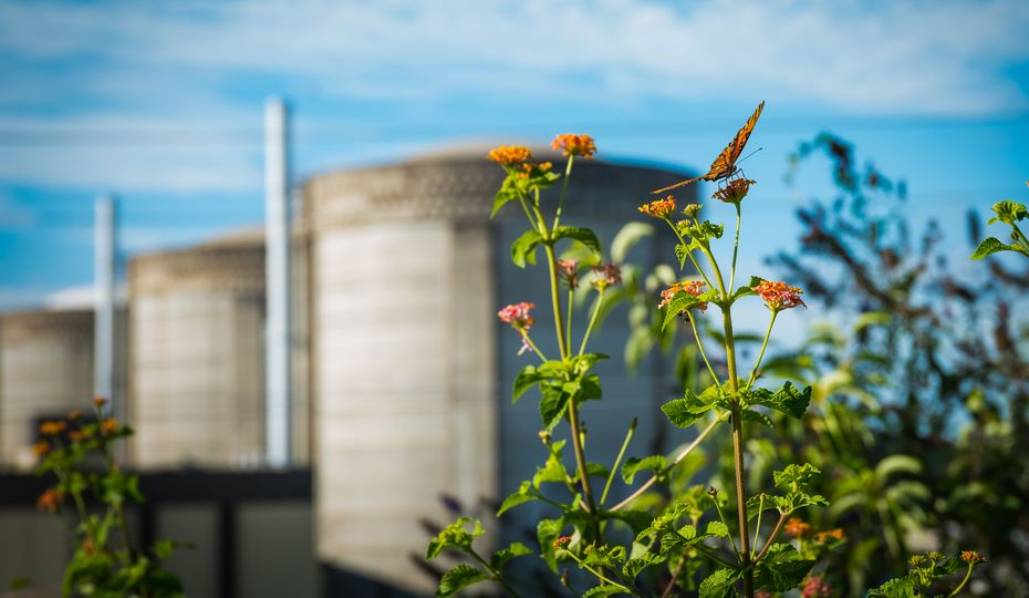 Keeping nuclear in the driver's seat: Duke Energy seeks to renew nuclear licenses