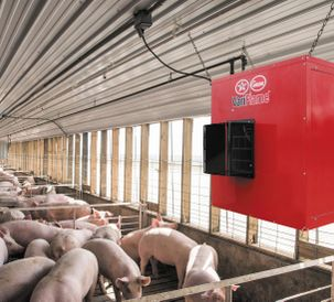 AP Offers New VariFlame™ Heater For Improved Control of Pork Production Environments