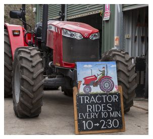 Massey Ferguson Visits The Collingwood Children's Farm