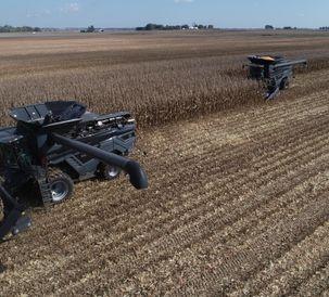 AGCO Fendt IDEAL Combine Corn 10_16_2018