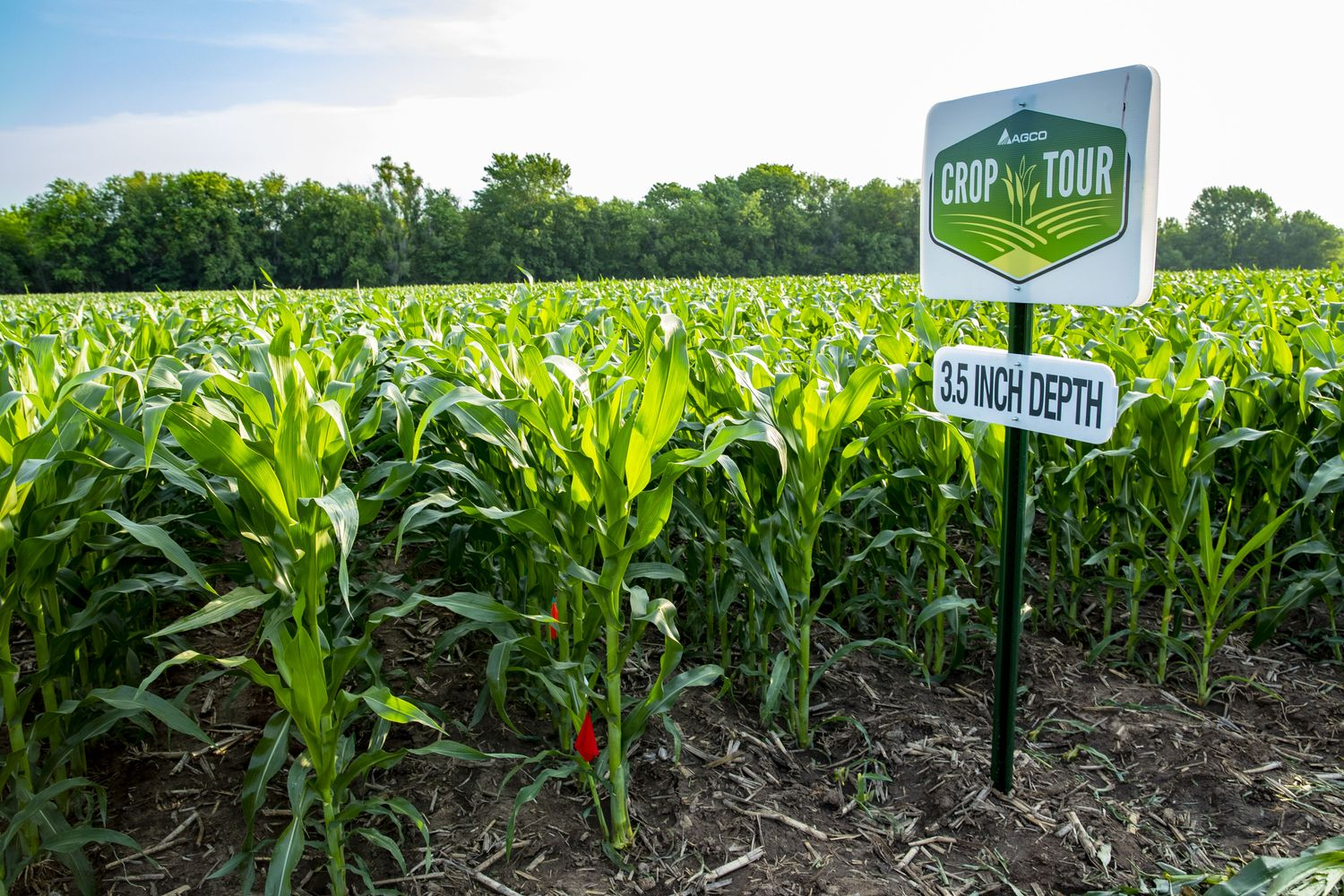 AGCO North America Field Demonstrations Confirm Impact of Ideal Planting Practices  on Corn Yields